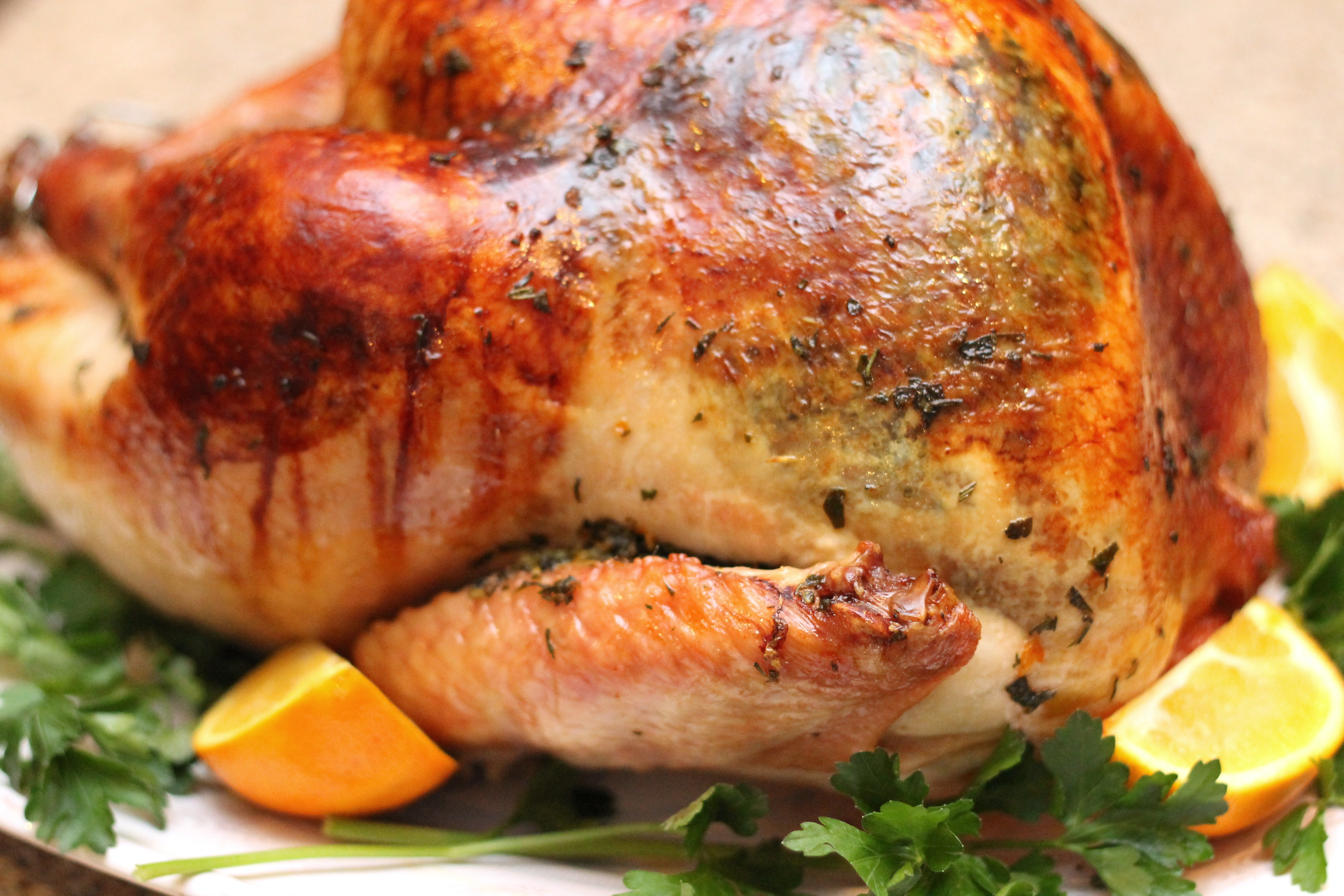 Herb Roasted Turkey and Other Thanksgiving Recipes